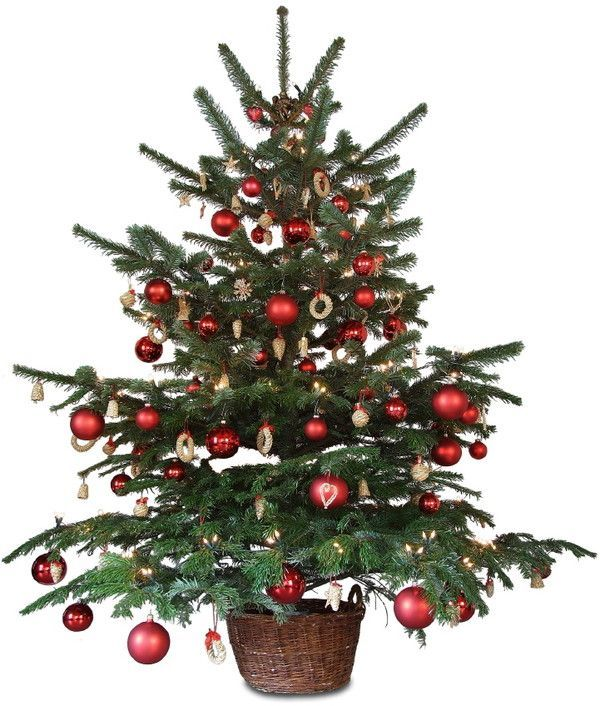 Magnifique sapin de Noël